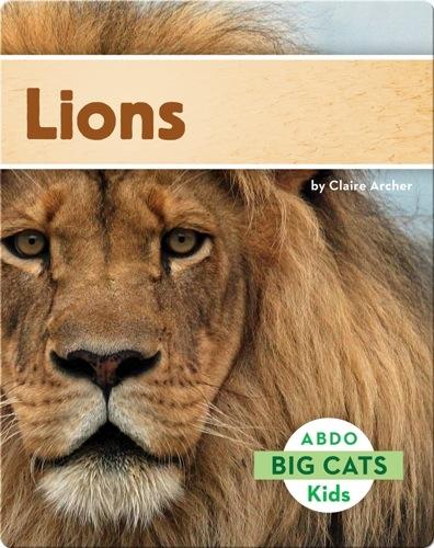 Big Cats: Lions