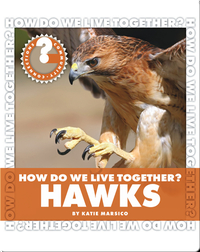 How Do We Live Together? Hawks