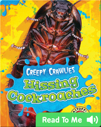 Creepy Crawlies: Hissing Cockroaches