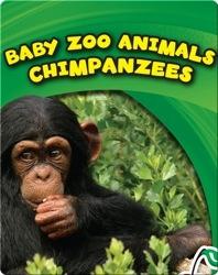 Baby Zoo Animals: Chimpanzees