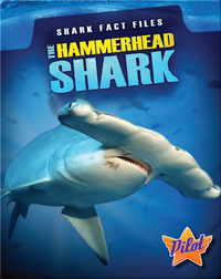 Shark Fact Files: The Hammerhead Shark