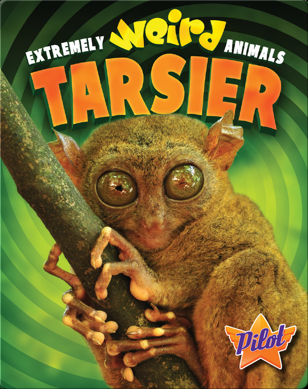 Extremely Weird Animals: Tarsier