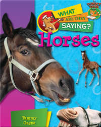 Horses: What Are They Saying?