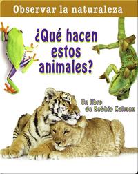 ¿Qué hacen estos animales?