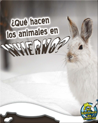 ¿Qué Hacen Los Animales En Invierno? (What Do Critters Do In The Winter?)