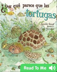 ¿Por qué parece que las tortugas están llorando?