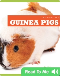 My First Pet: Guinea Pigs