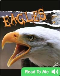 Raptors: Eagles