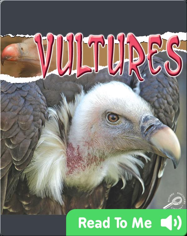Raptors: Vultures