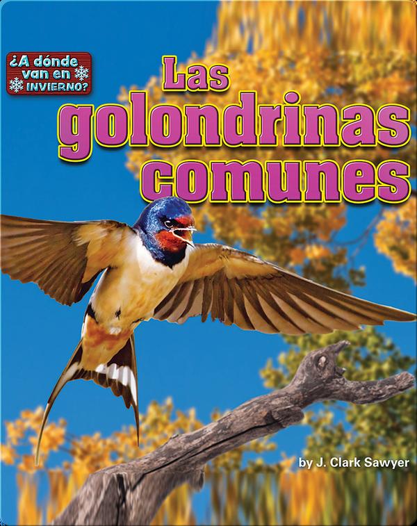 Las golondrinas comunes (barn swallows)
