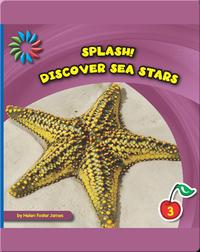 Discover Sea Stars