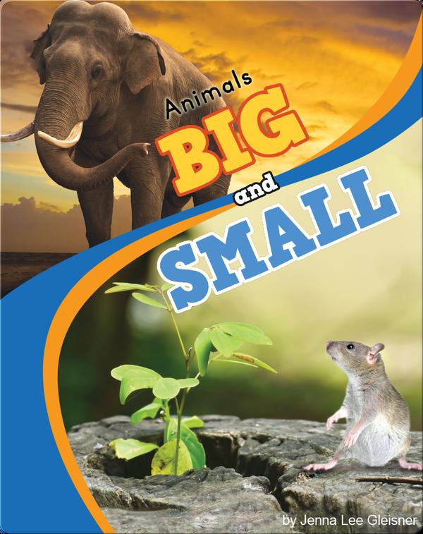Animals Big And Small