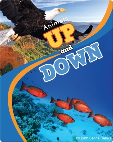 Animals Up and Down