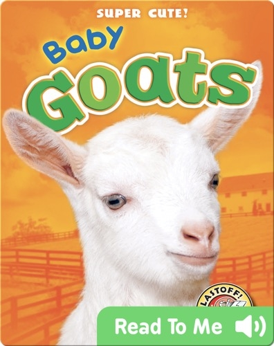 Super Cute! Baby Goats
