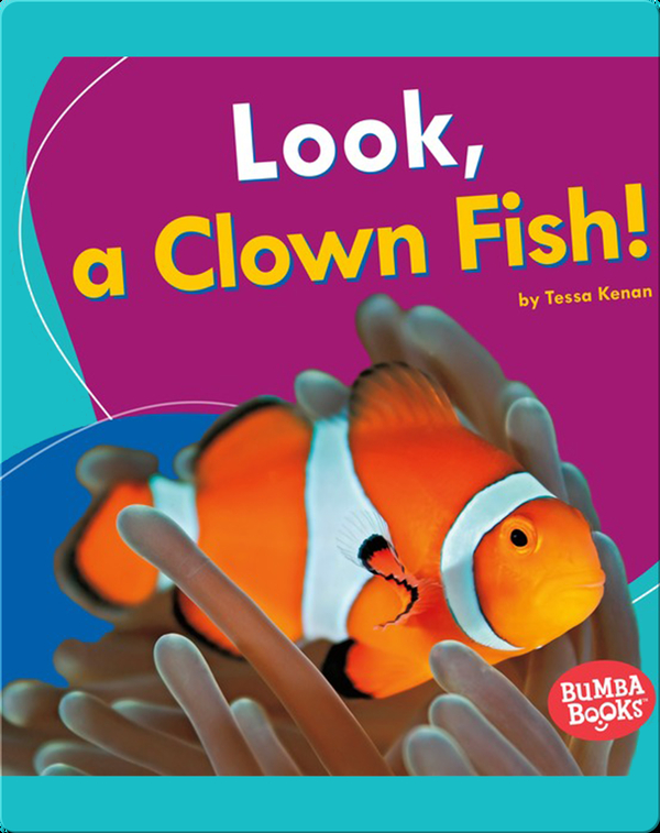 Look, a Clown Fish!