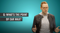 What's the Point of Ear Wax?