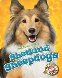 Awesome Dogs: Shetland Sheepdogs