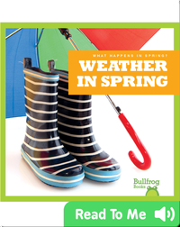 What Happens In Spring? Weather In Spring