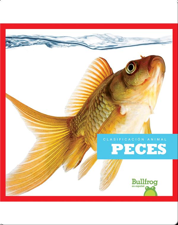 Clasificación Animal: Peces