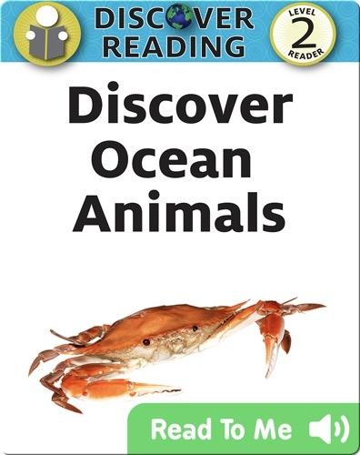 Discover Ocean Animals