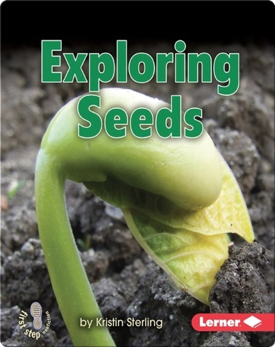 Exploring Seeds