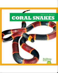 Reptile World: Coral Snakes