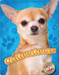 Awesome Dogs: Chihuahuas