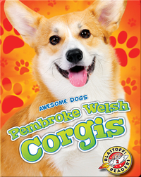 Awesome Dogs: Pembroke Welsh Corgis