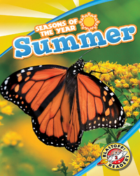 Seasons of the Year: Summer