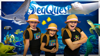 Kids Animal Adventure: SeaQuest Interactive Aquarium