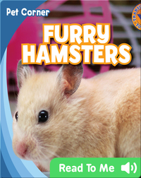 Furry Hamsters
