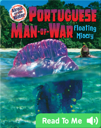 Portuguese Man-of-War: Floating Misery