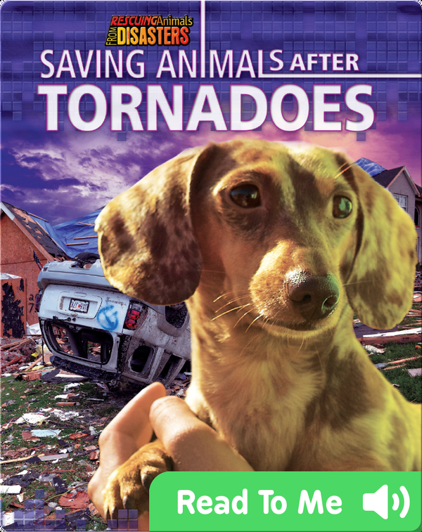 Saving Animals After Tornadoes