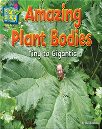 Amazing Plant Bodies: Tiny to Gigantic