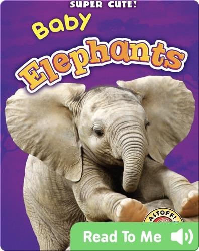 Super Cute! Baby Elephants