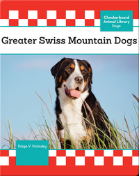 Greater Swiss Mountain Dogs