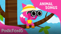 This Is the Savanna (Animal Songs)