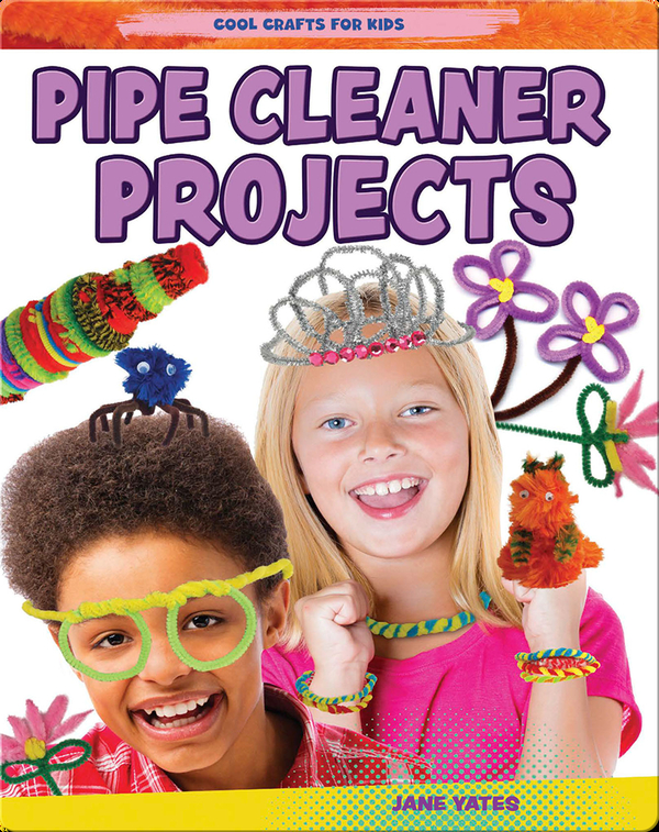 Pipe Cleaner Projects