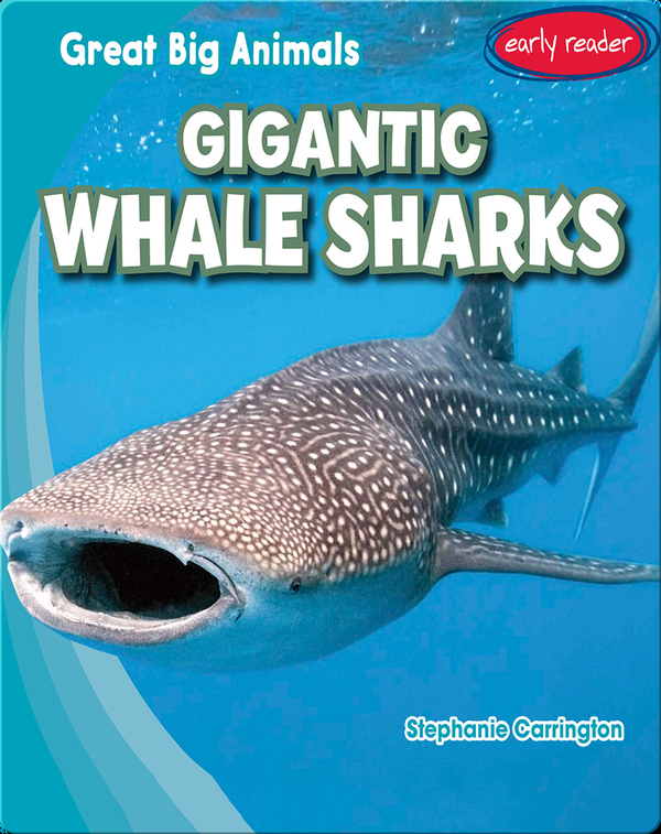 Gigantic Whale Sharks