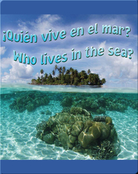 Quien Vive En El Mar?  (Who Lives In The Sea?)