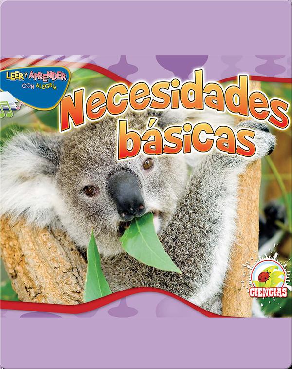 Necesidades Básicas (Basic Needs)