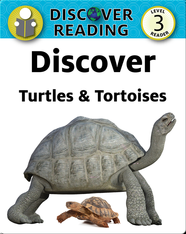 Discover Turtles & Tortoises