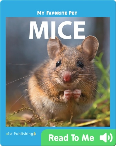 My Favorite Pet: Mice