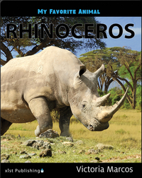 My Favorite Animal: Rhinoceros
