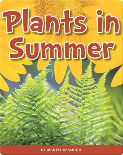 Plants in Summer