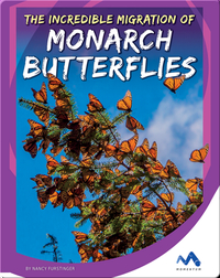 The Incredible Migration of Monarch Butterflies