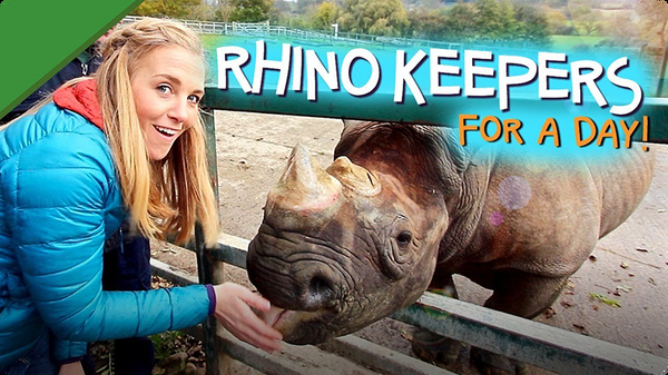 Rhino Keepers for a Day!