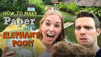 How to make Paper out of Elephant Poo?!