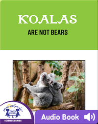 Koalas Are Not Bears