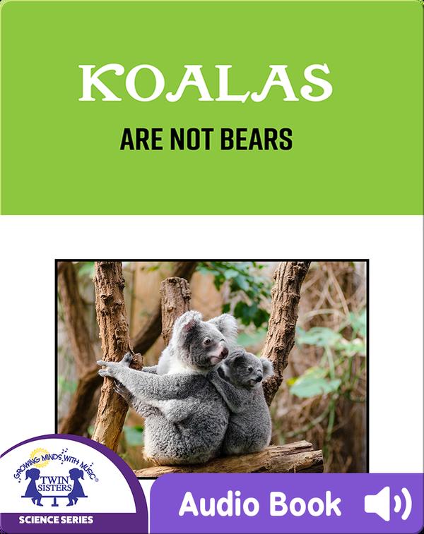 Koalas Are Not Bears